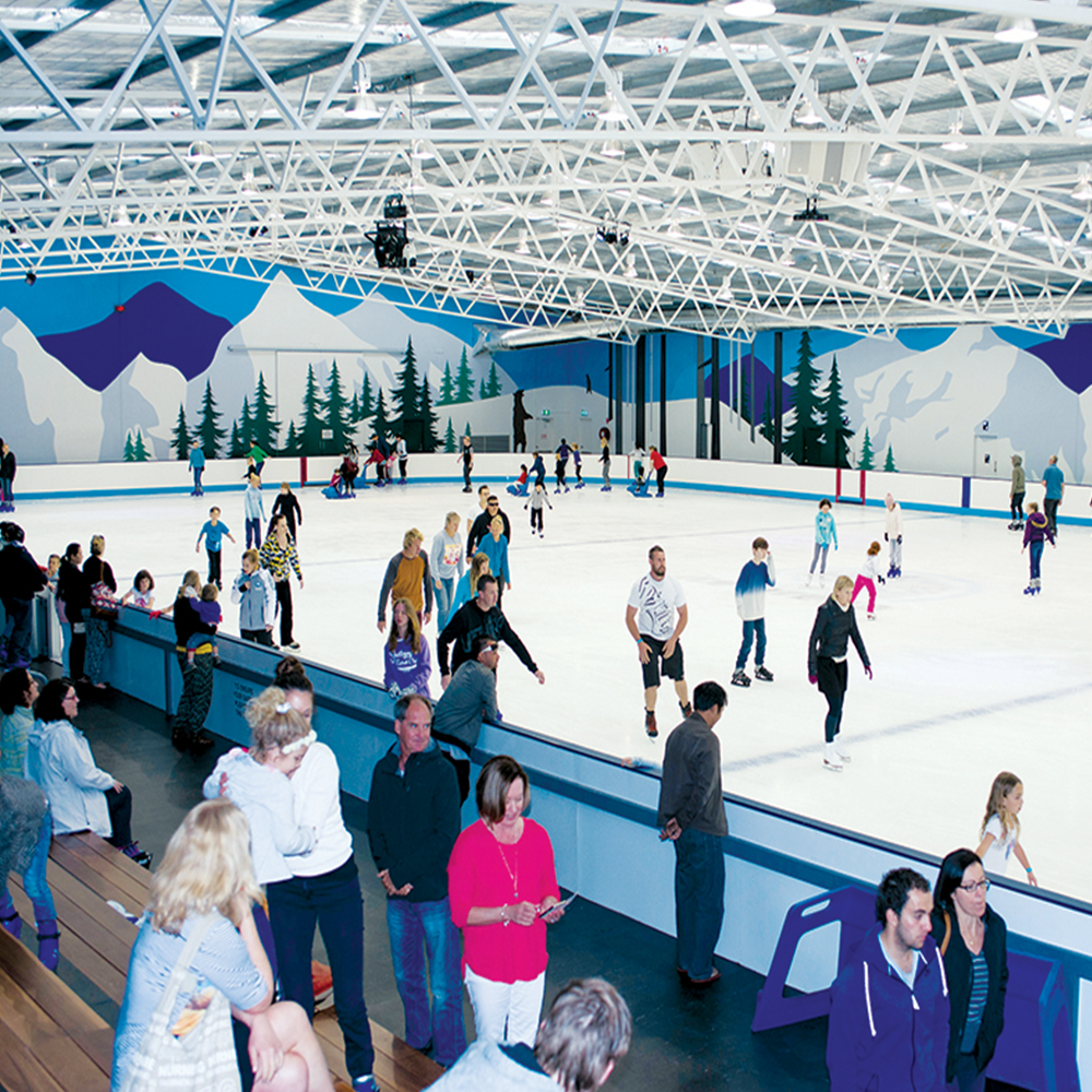 A group ice skating as part of their function